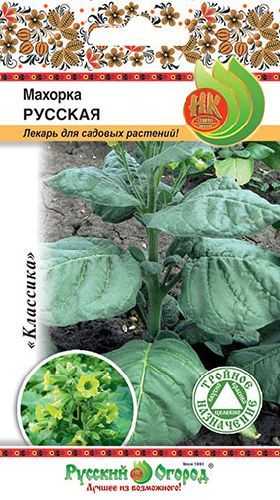 Махорка (табак курительный) Русская, семена Русский огород 0,01г — цена в LETTO